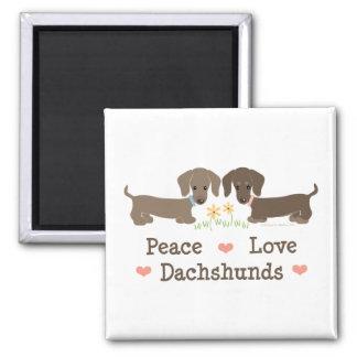 Imán de los Dachshunds del amor de la paz