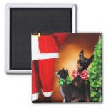 Imán de los mascotas de Santa y del navidad