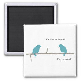 Imán de los pájaros que habla