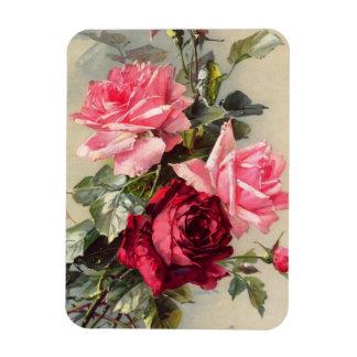 Imán de los rosas rosados y rojos del vintage
