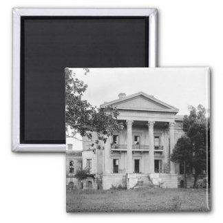 Imán de Luisiana de la plantación de la arboleda d