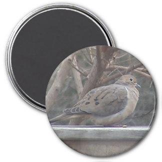 Imán de luto de la paloma