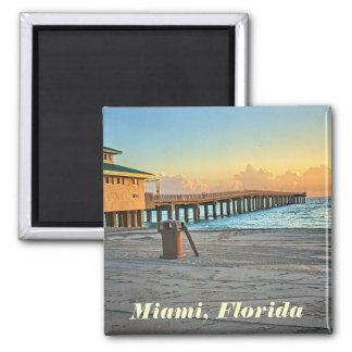 Imán de Miami, la Florida