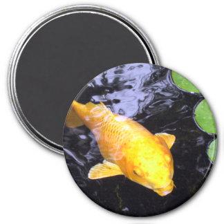 Imán de oro del refrigerador de los pescados de Ko