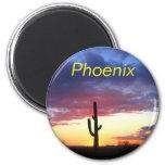 Imán de Phoenix