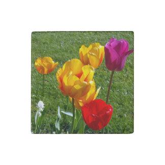 Imán de piedra de los tulipanes
