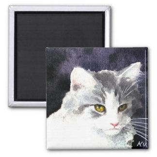 Imán de plata y blanco del gatito
