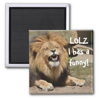 Imán de risa del león