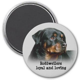 Imán de Rottweiler