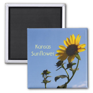 Imán de Sun Kansas de la mañana