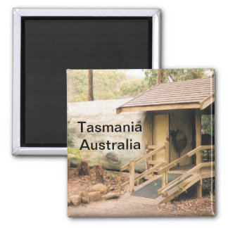 Imán de Tasmania, Australia