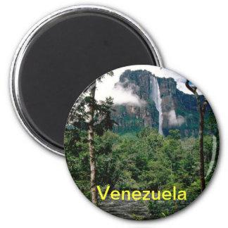 Imán de Venezuela
