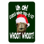 Imán de Whoot Whoot del camello del día de chepa d