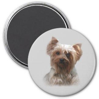 Imán de Yorkshire Terrier