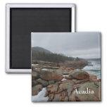 Imán del Acadia - 1