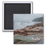 Imán del Acadia - 2