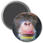 Imán del arte de la fauna del primate de la CARA d