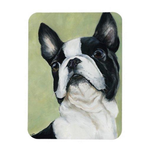 Imán del arte del perro de Boston Terrier