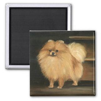 Imán del arte del perro de Pomeranian