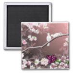 Imán del asilo de la flor de cerezo