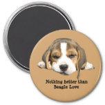Imán del beagle