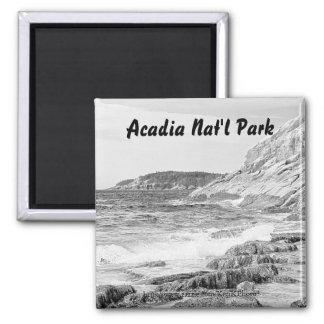 Imán del bosquejo de la orilla del Acadia