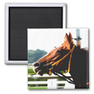Imán del caballo de raza
