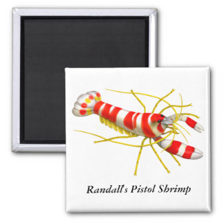 Imán del camarón de la pistola de Randall