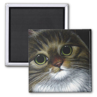 Imán del CAT de COON de MAINE
