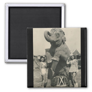 imán del circo del elefante y de 2 chicas