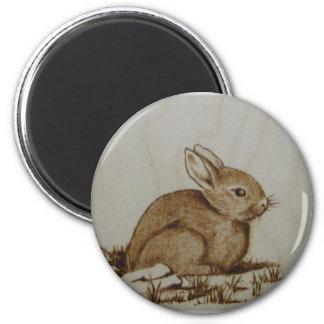 Imán del conejo - calamita de Coniglietto