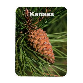 Imán del cono del pino de Kansas