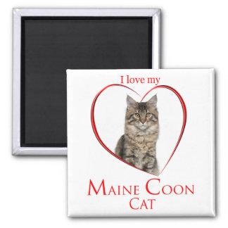 Imán del Coon de Maine
