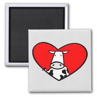 Imán del corazón de la vaca