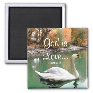 Imán del cristiano del cisne