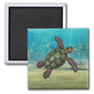Imán del cuadrado de la tortuga de mar