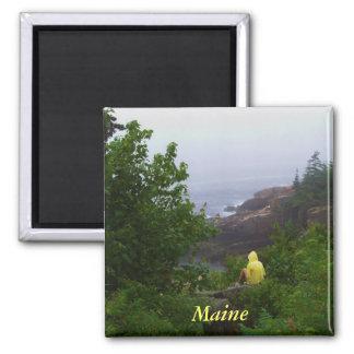 Imán del cuadrado del Daydreamer de Maine