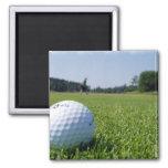 Imán del cuadrado del espacio abierto del golf