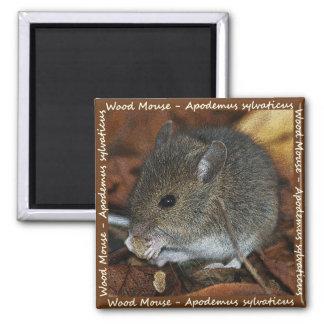 Imán del cuadrado del ratón de madera