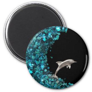 Imán del delfín y de Paua Shell