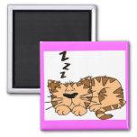 Imán del dibujo animado el dormir del gato