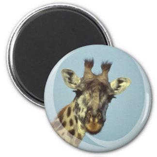 Imán del diseño de la jirafa