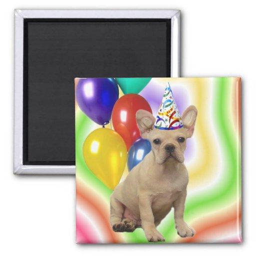 Imán del dogo francés del feliz cumpleaños