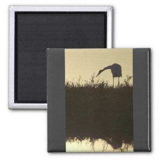 Imán del Egret