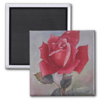 Imán del el día de San Valentín del rosa rojo