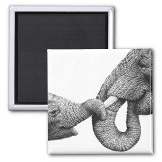 Imán del elefante africano y del bebé