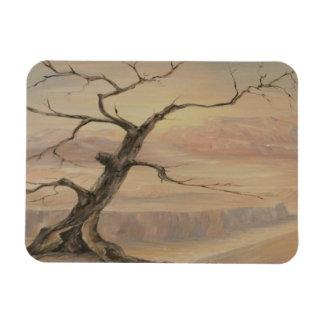 Imán del gancho del árbol del desierto