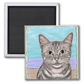 Imán del gatito de la playa