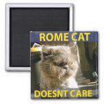 Imán del gato de Roma