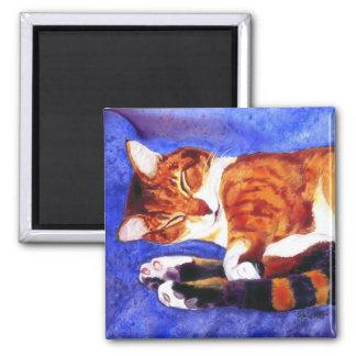 """Imán del gato de Tabby - """"tiempo de la siesta """""""